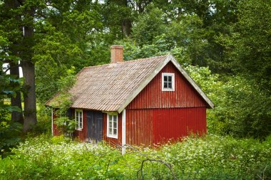 Red swedish cottage