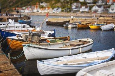 Small fishing boats