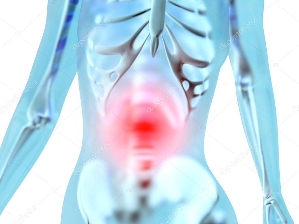 Weibliche Anatomie - Bauchschmerzen — Stockfoto © Spectral #74115911