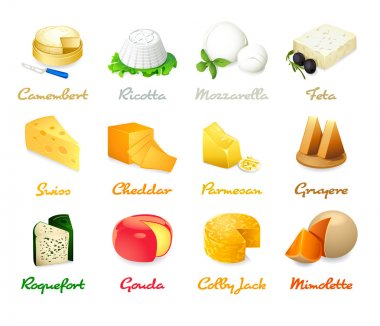 Most popular kind of cheese icons isolated stock vector