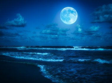 Beach at midnight with a full moon
