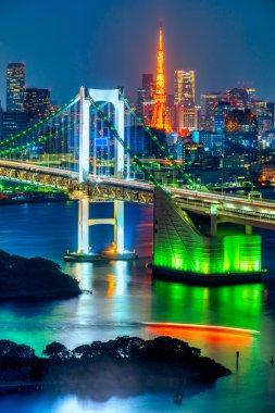 View of Tokyo in Japan