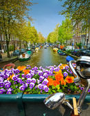 Kolo a květiny na mostě v Amsterdamu