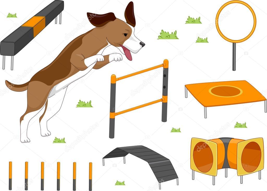 Dog Agility Training Prices