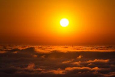 Breathtaking sunset in Californias Mt Tamalpais State Park stock vector