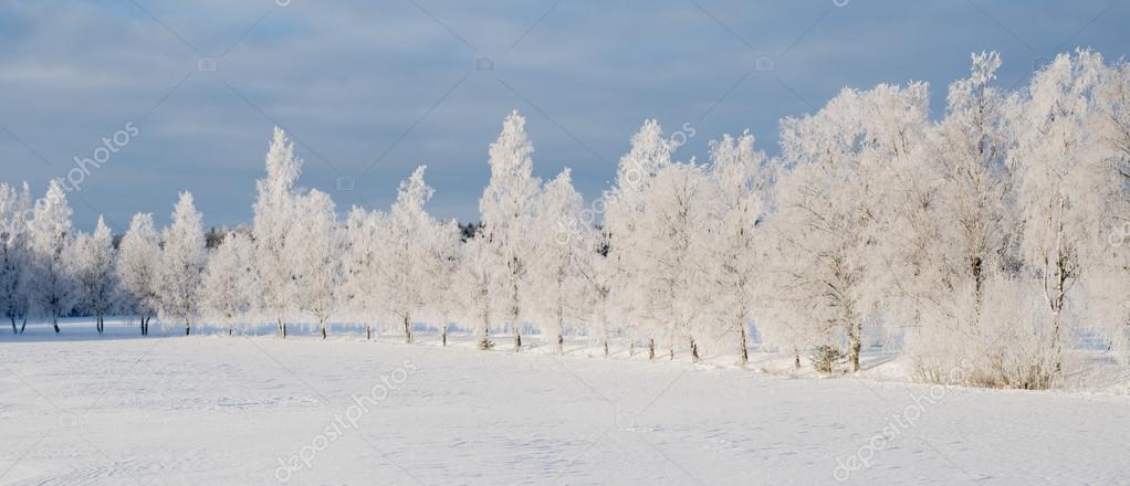 Paesaggio invernale in svezia foto stock contas30 for Disegni paesaggio invernale