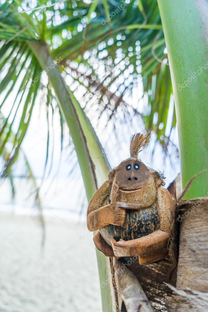 Coconut monkey at the beach