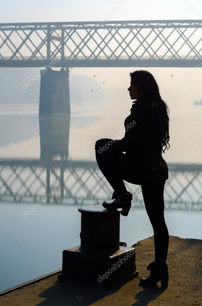 Silhouette of girl standing on dock with bridge and birds in background
