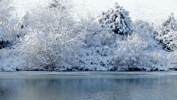Neuschnee am Ufer des kleinen Sees