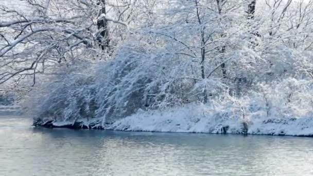 Čerstvý sníh na břehu malého jezera