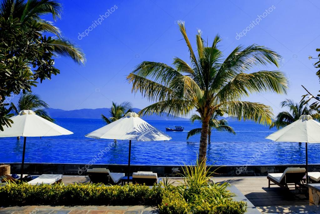 blue pool with palm trees