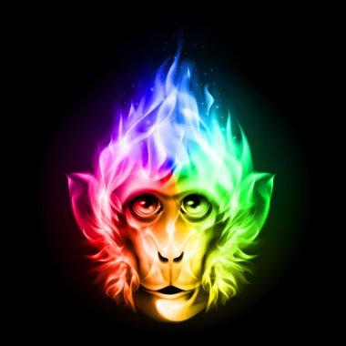 Monkey fire head