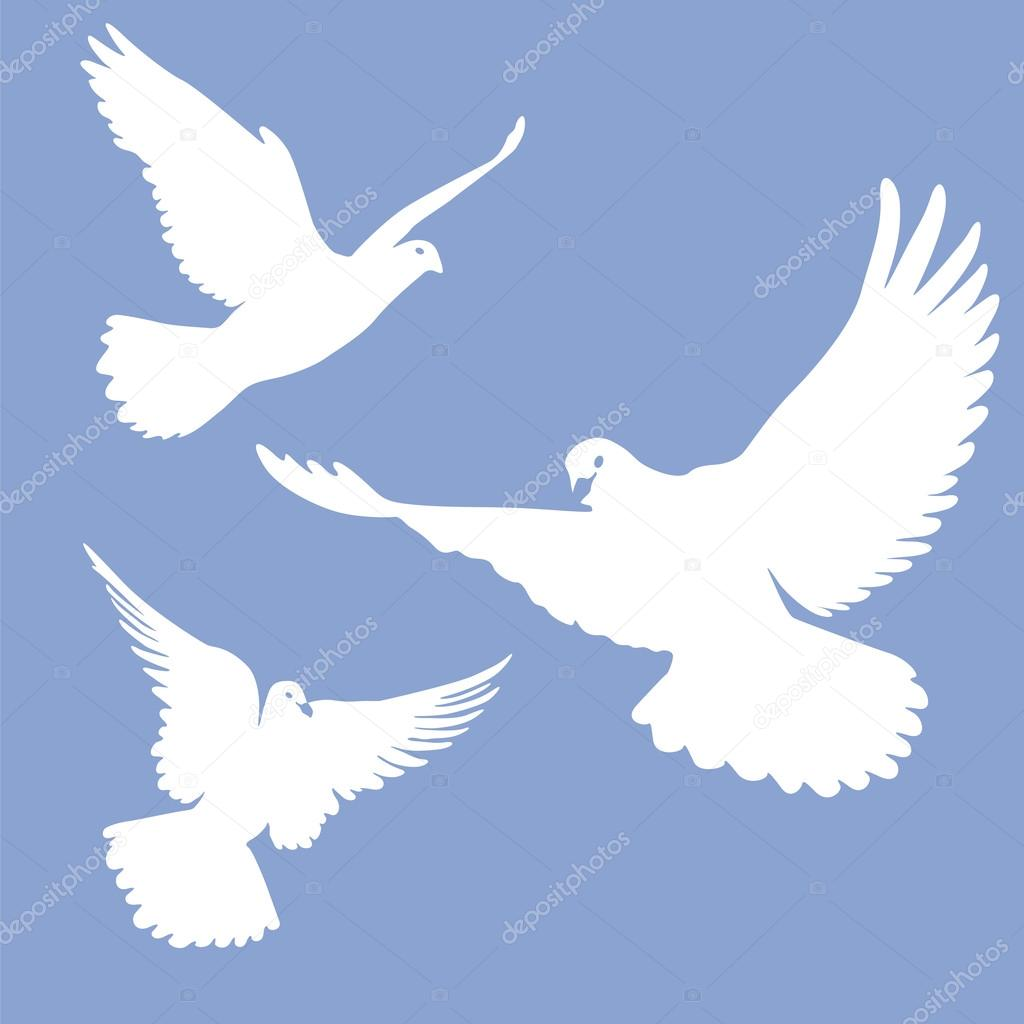 Pigeons Stock Vectors Royalty Free Pigeons Illustrations