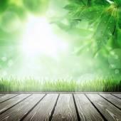 jarní příroda pozadí s trávou