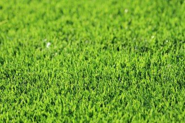 plastic green grass background