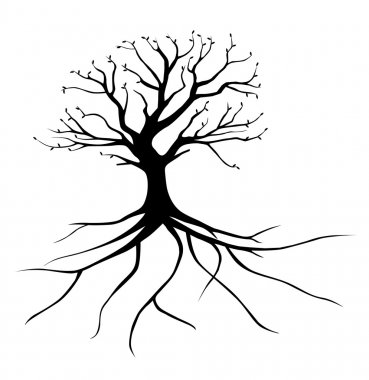 whole black tree with roots