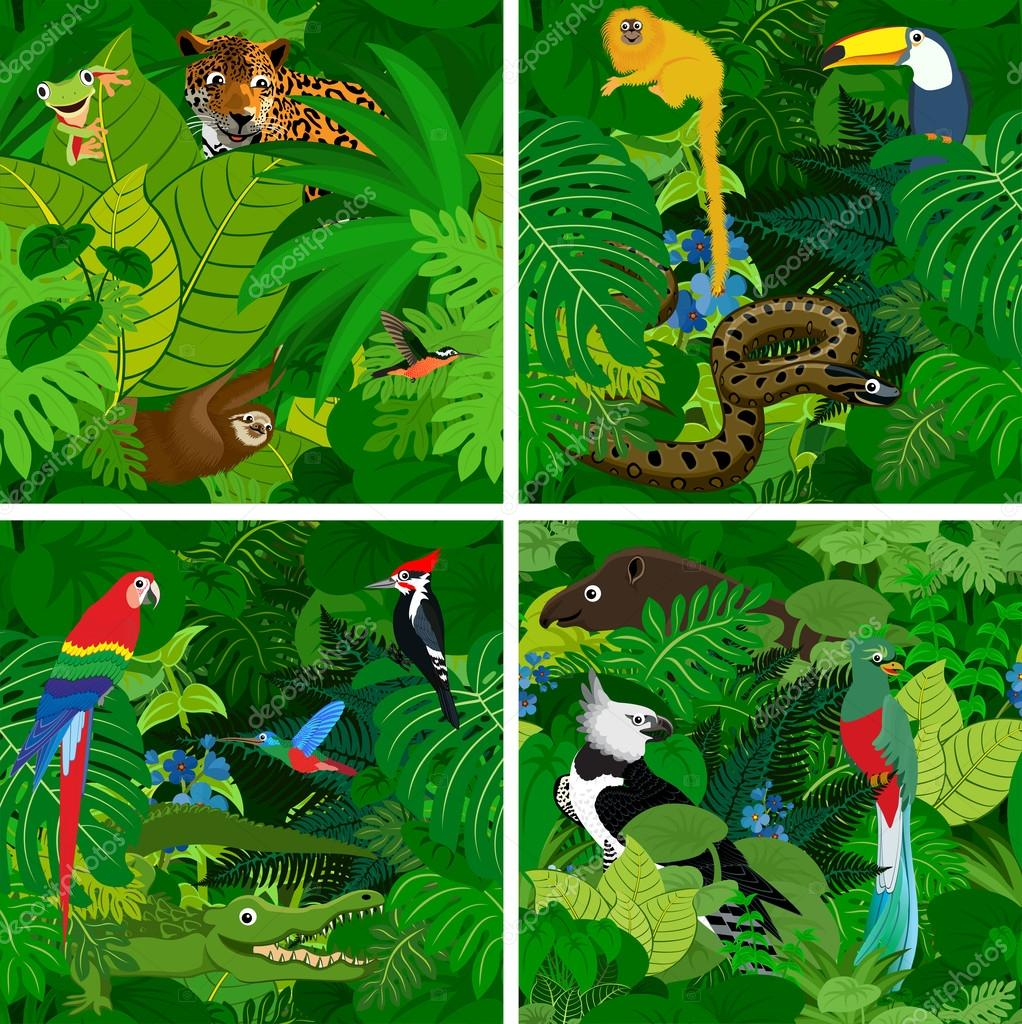 jungle background for kids wwwpixsharkcom images