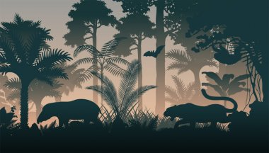 vector evening in jungle with animals