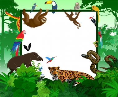 vector frame with tropical jungle cartoon animals