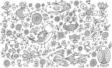 Doodle sketch Birds Flowers
