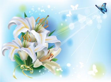 Greeting card with white lilies