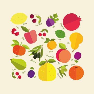 Signed сolor fruit