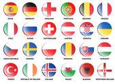 Tým kvalifikovaných země pro fotbalové mistrovství Evropy v roce 2016