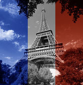 Paris Eiffel Tower french flag