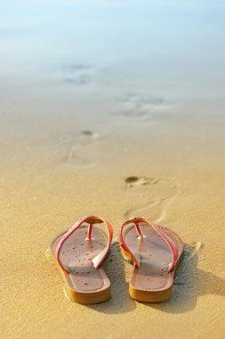Summer vacation concept. Flip flops on a sandy ocean beach