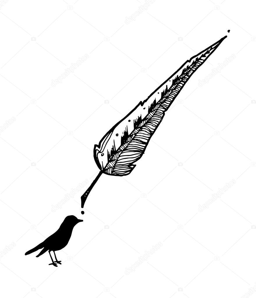 Une Dessin Plume Et Oiseaux à L Encre Image Vectorielle