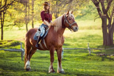 Beautiful girl riding horse on summer field