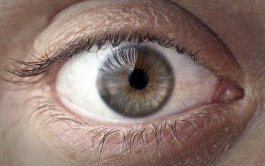 Beautiful man's green eye stock vector