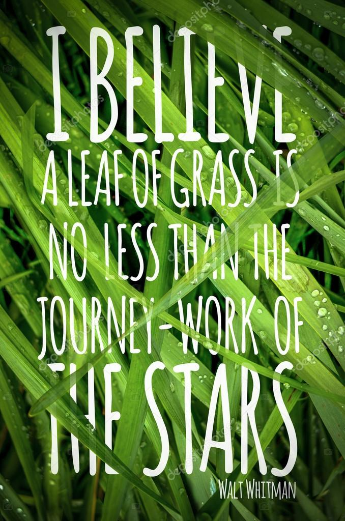 Walt Whitman Quote Poster With Grass