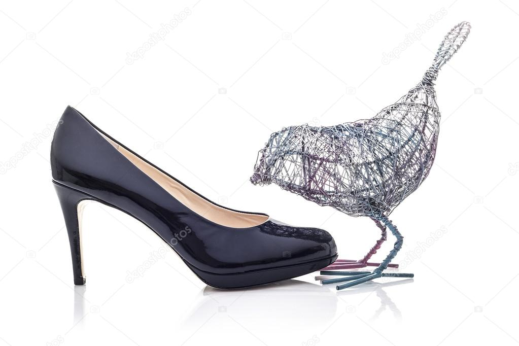 Wire Bird with High Heel shoe on a white background — Stock Photo ...