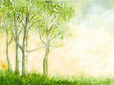 birch trees watercolor vector illustration. abstract nature back