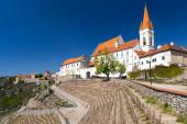 Stadt Weinberg Znojmo, Südmähren