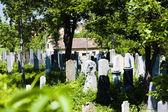 Židovský hřbitov, Miroslav