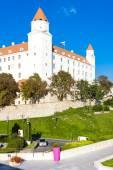 Fotografie Bratislavský hrad, Slovensko