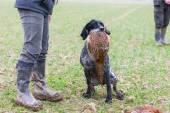 Fotografie lovec se psem na lovu