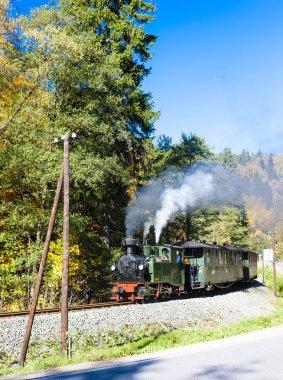 Buharlı tren, Steinbach - Johstadt