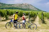Fotografie motorkáři, zřícenina hradu Devicky s vinicí