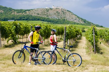 bikers, ruins of Devicky castle with vineyard