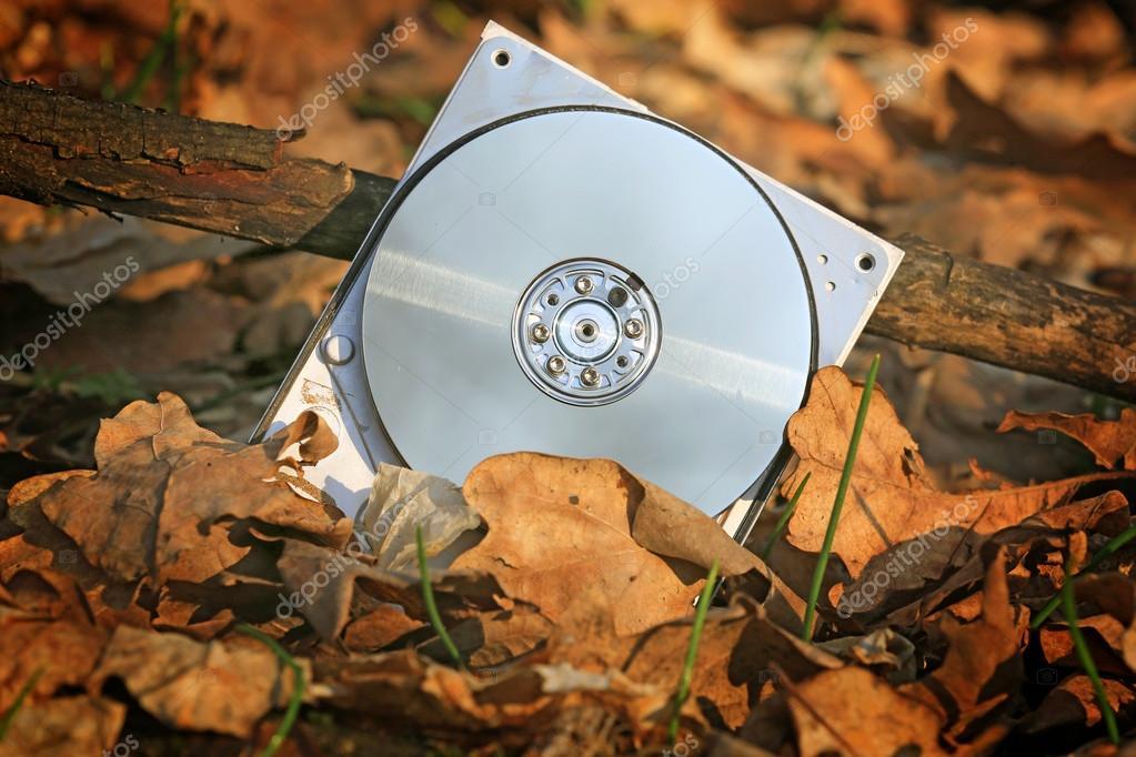Broken computer hard drive in forest