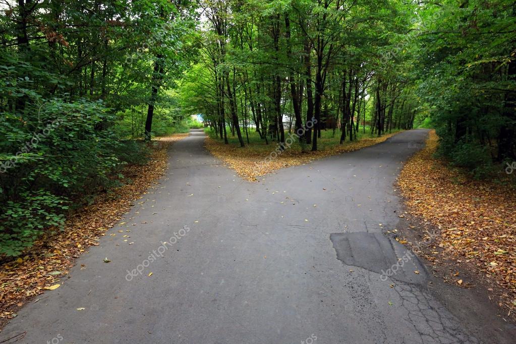 Fork asphalt roads