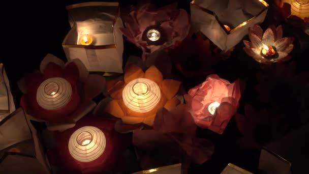 Floating Lotus Flower Paper Lanterns On Water Stock Video