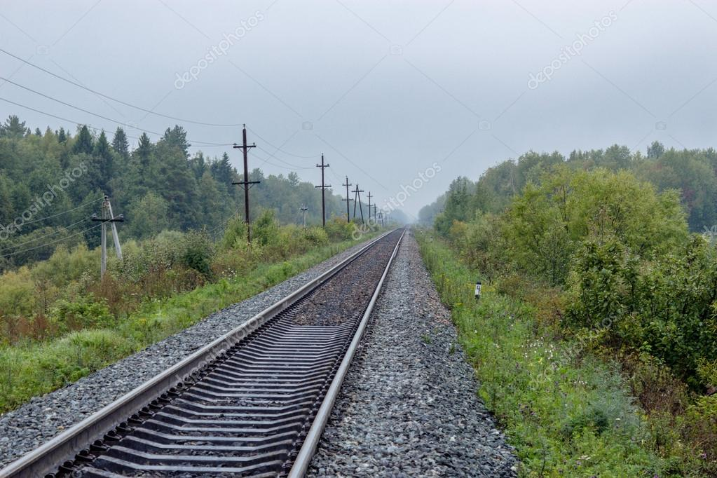 railway in forest area