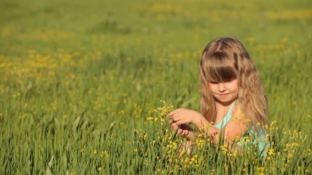 Rozkošné dítě sedí v poli