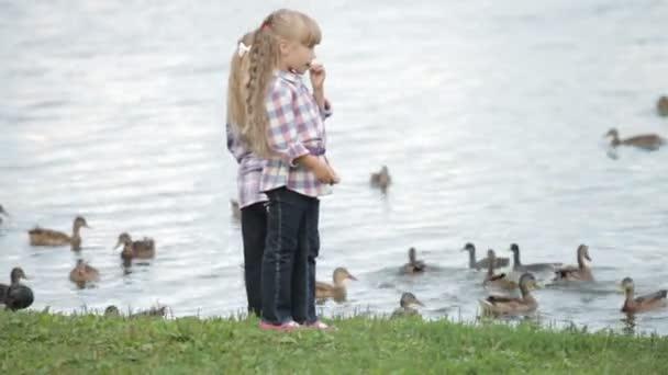 zwei kleine Mädchen füttern Enten