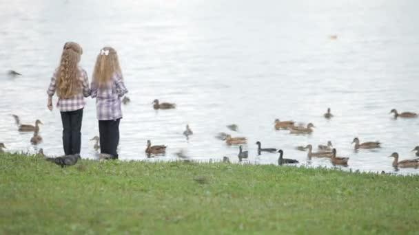 little girls feeding ducks