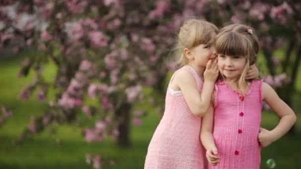 děvčata šuškají a s úsměvem